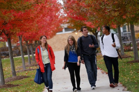 students-in-fall